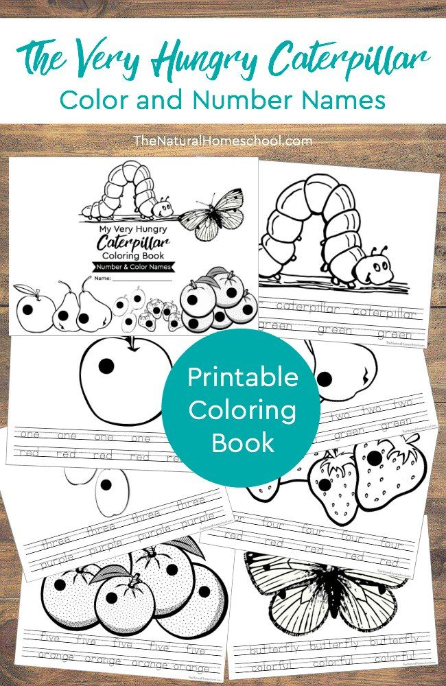 the very hungry caterpillar printable book color and number names