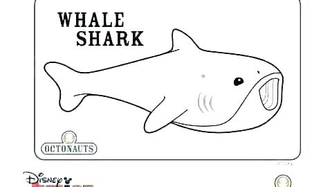 Coloring Pages Octonauts Coloring Pages Coloring Pages Free Printable Whale Shark Page Of Activity Happy In Addition To Co Whale Shark Octonauts Coloring Pages