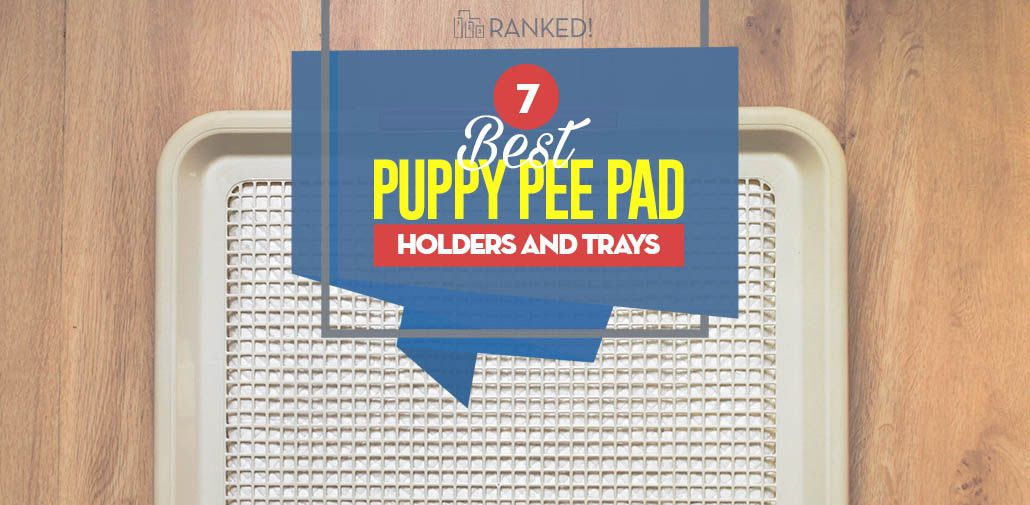 The 7 Best Puppy Pee Pad Holders And Trays Dogs Best Puppies