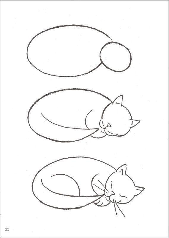 Katzen Katzen Katzen Malen Und Zeichnen Tierzeichnung Katze Zeichnen