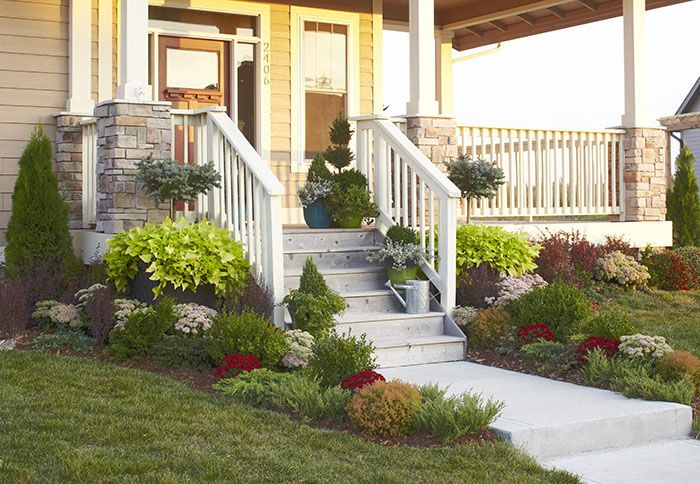 garden in front of home with -maintenance