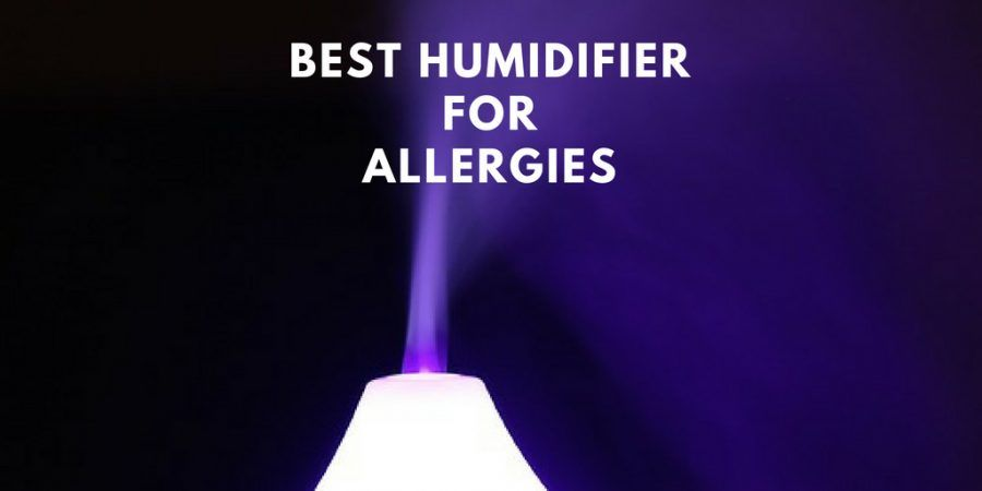 Can Humidifiers Help With Allergies? | Allergies, Humidifier