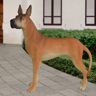 Life Size Great Dane Statue 55 H 699 00 Huge Great Dane Statue