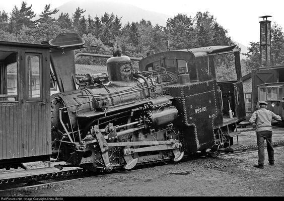RailPictures.Net Photo: 999.101 Austria Federal Railways (ÖBB) Steam 0-4-0 at Puchberg, Austria by J Neu, Berlin: