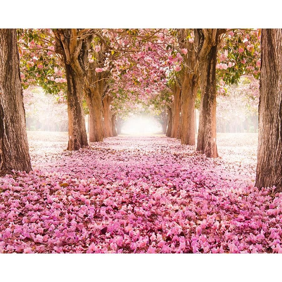 Ohpopsi Yonder Wall Mural Lowes Com Landscape Trees Cherry Blossom Wallpaper Paint By Number