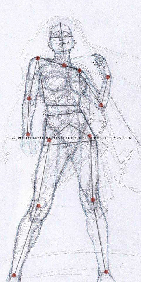 #art #anatomy #draw #drawing #pencil #disegno # #sketch #study #artanddrawing