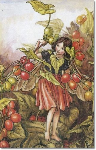 Cicely Mary Barker - Flower Fairies of the Autumn - The Black Bryony Fairy Archival Fine Art Paper Print