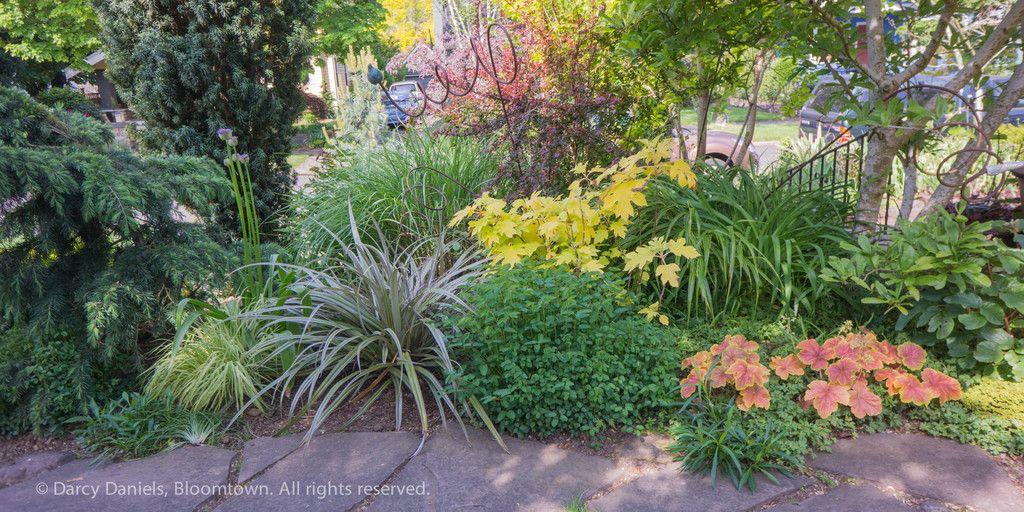 Vignettes Darcy Daniels Darcydaniels Plants Small Garden Garden Inspiration