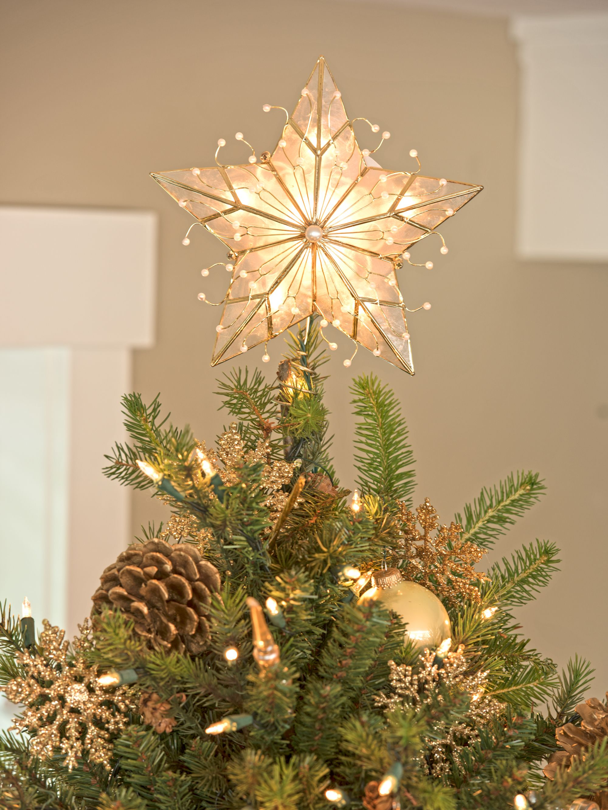 Christmas Tree Topper.Christmas Tree Star Topper Capiz Star Christmas Tree