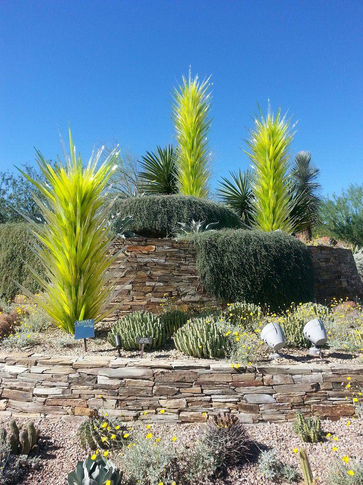 Desert Botanical Garden Phoenix, AZ, United States