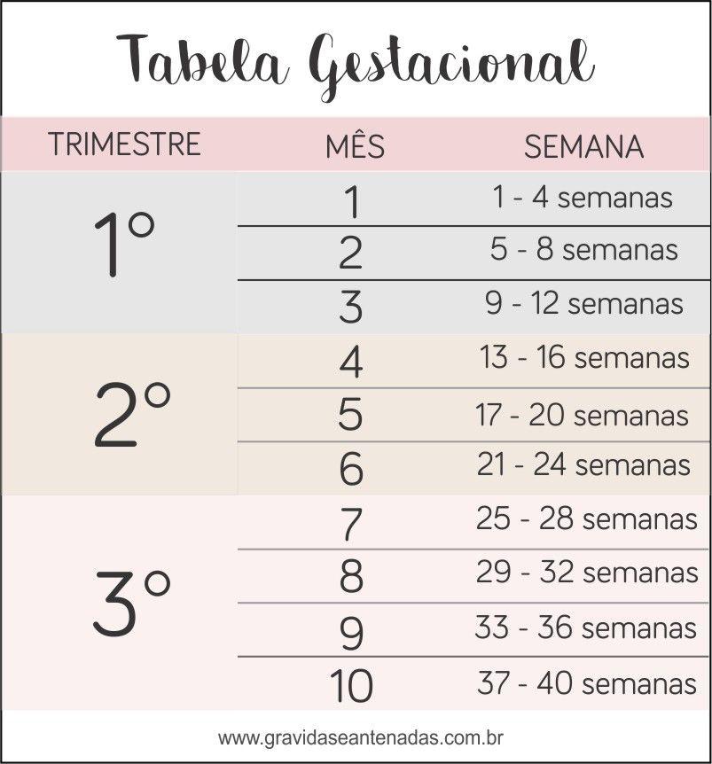 Tabela Gestacional Meses X Semanas Aprenda A Calcular Dicas De