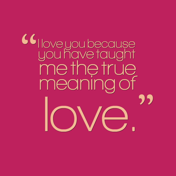 The Meaning Of Love Quotes: I Love You Because You Have Taught Me The True Meaning Of