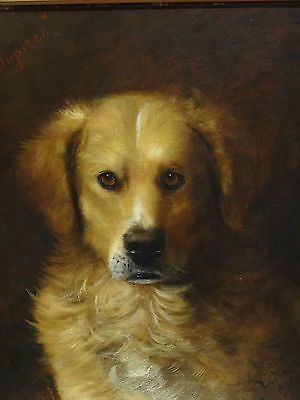 Fine Large 19th Century Retriever Dog Portrait Jupiter Antique Oil