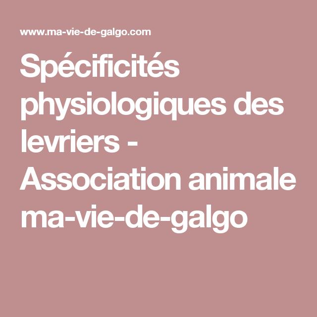 Spécificités physiologiques des levriers -  Association animale ma-vie-de-galgo