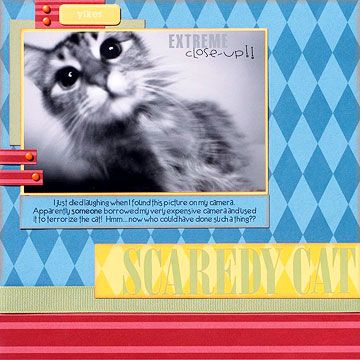 scrapbook layout for cat
