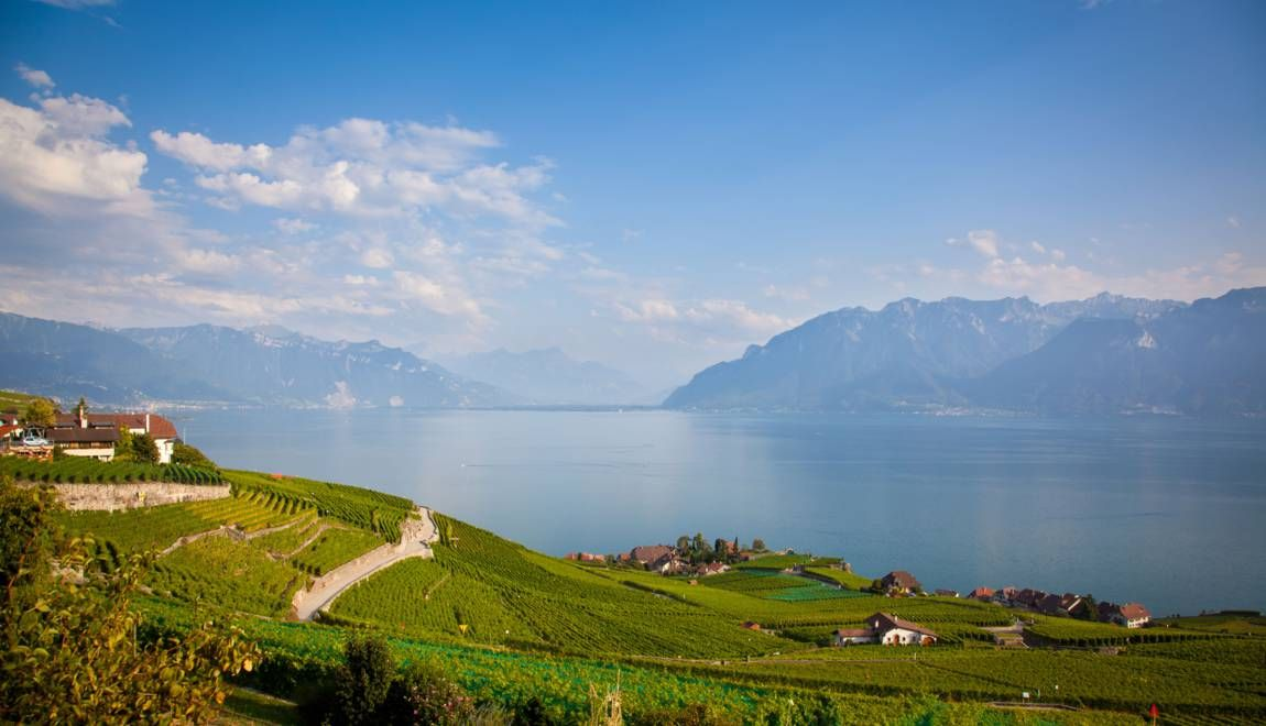 Suisse 10 Idees De Randonnees Autour Du Lac Leman Lac Leman Lac Paysage Montagne