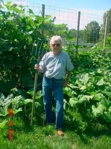 Winter Squash Growing From Bales Tomatoes On Trellis Straw Bale Gardening Straw Bales Strawbale Gardening