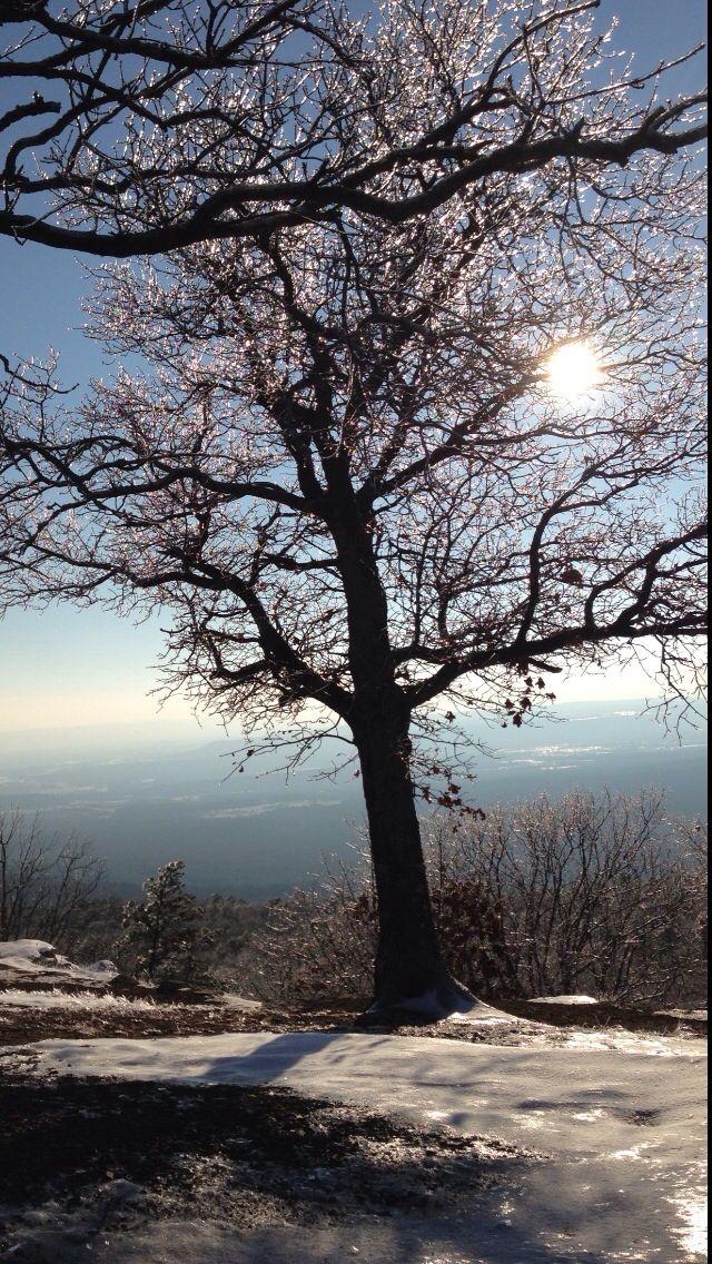 Arkansas winter 2012