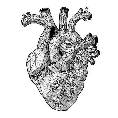 The Heart Mgns Dibujo De Corazon Humano Dibujos De Corazones Dibujos