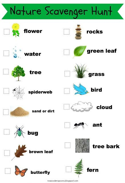 Nature walk scavenger hunt list with pictures photo for List of natural items