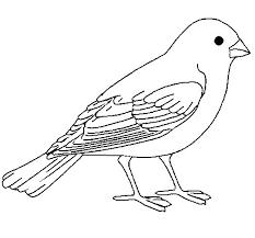 Resultado De Imagen Para Imagenes De Pajaros Para Imprimir Bird Coloring Pages Coloring Pages Colouring Pages