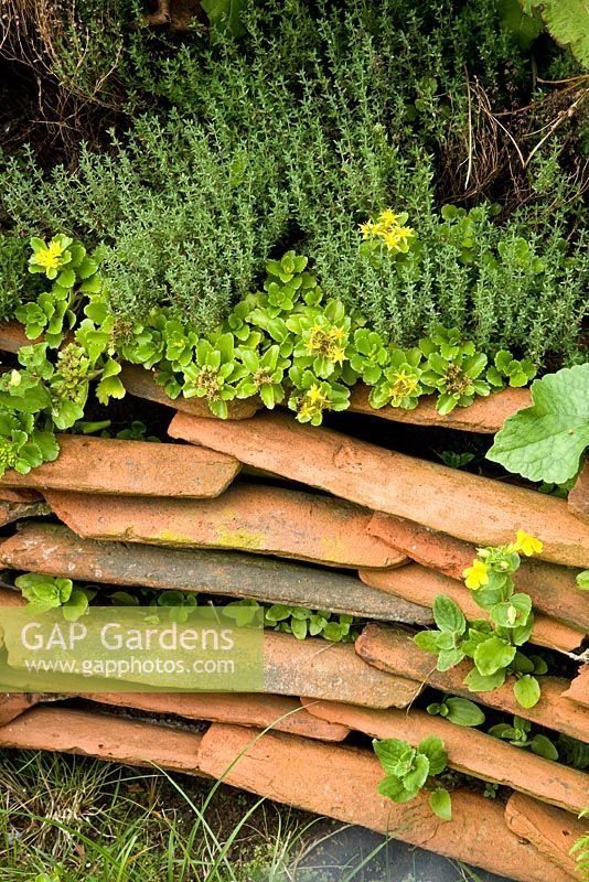 100 Garden Edging Ideas That Will Inspire You to Spruce Up Your Yard – Page 3 of 4