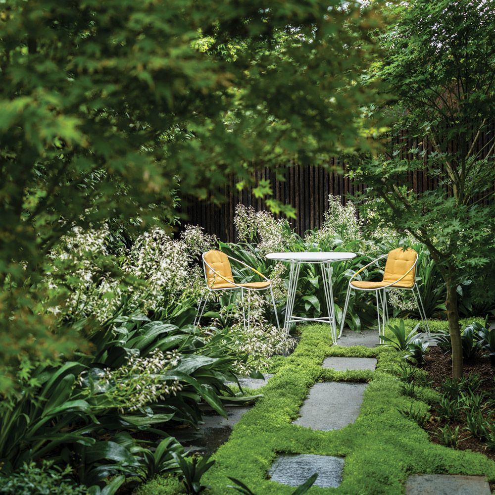 Products from Tait as featured in The Planthunter Directory, for ...
