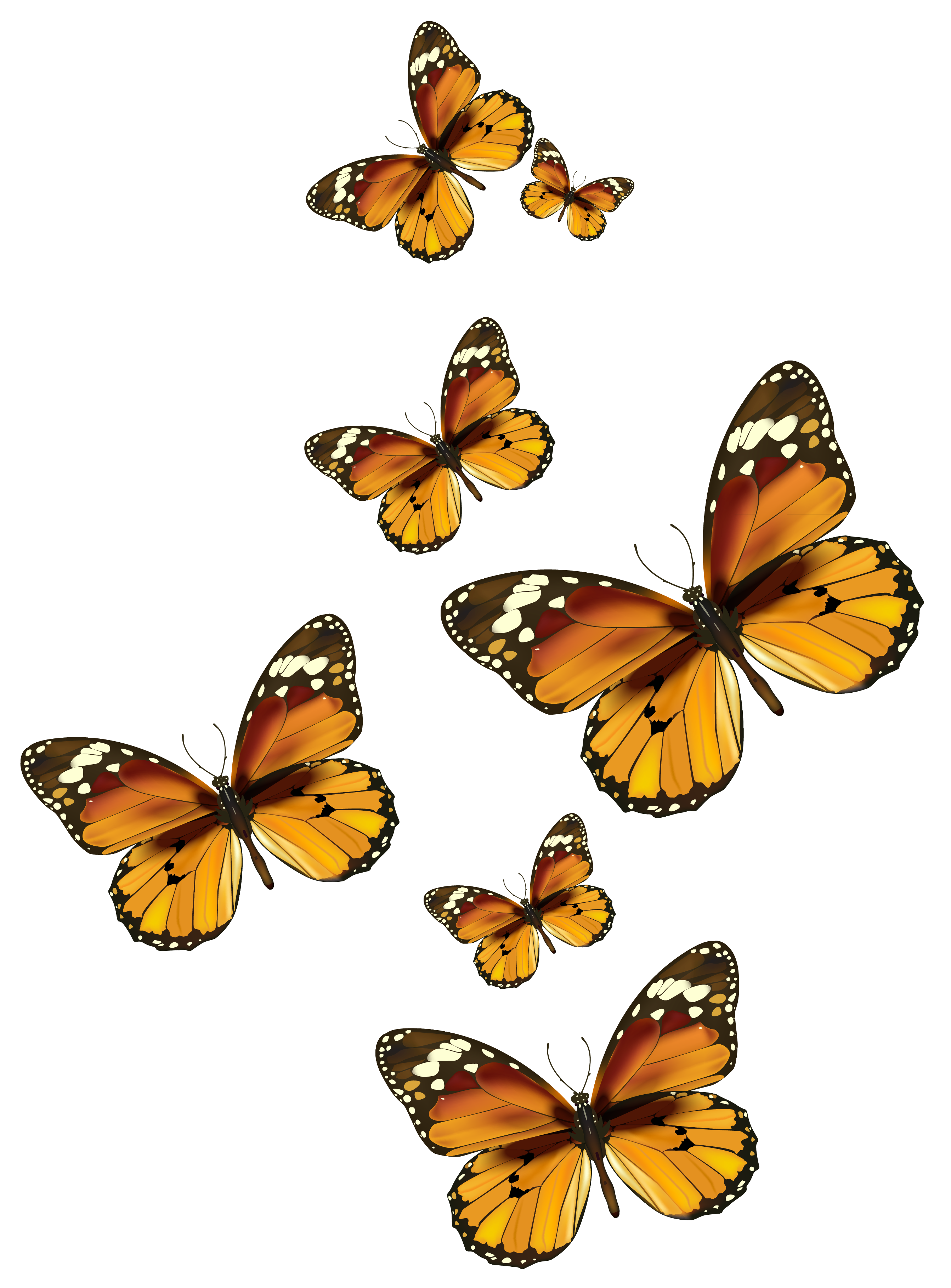 Butterflies Vector Png Clipart Picture Butterfly Clip Art Butterflies Vector Cartoon Butterfly