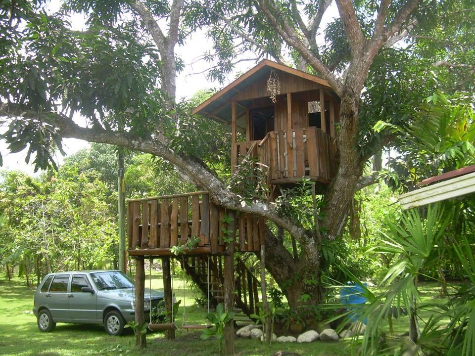 Casa árbol de mango Parrita