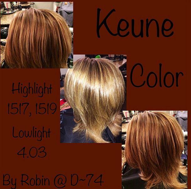 Keune Color Highlight 1517 1519 Lowlight 4 03 Colored Highlights Dream Hair About Hair