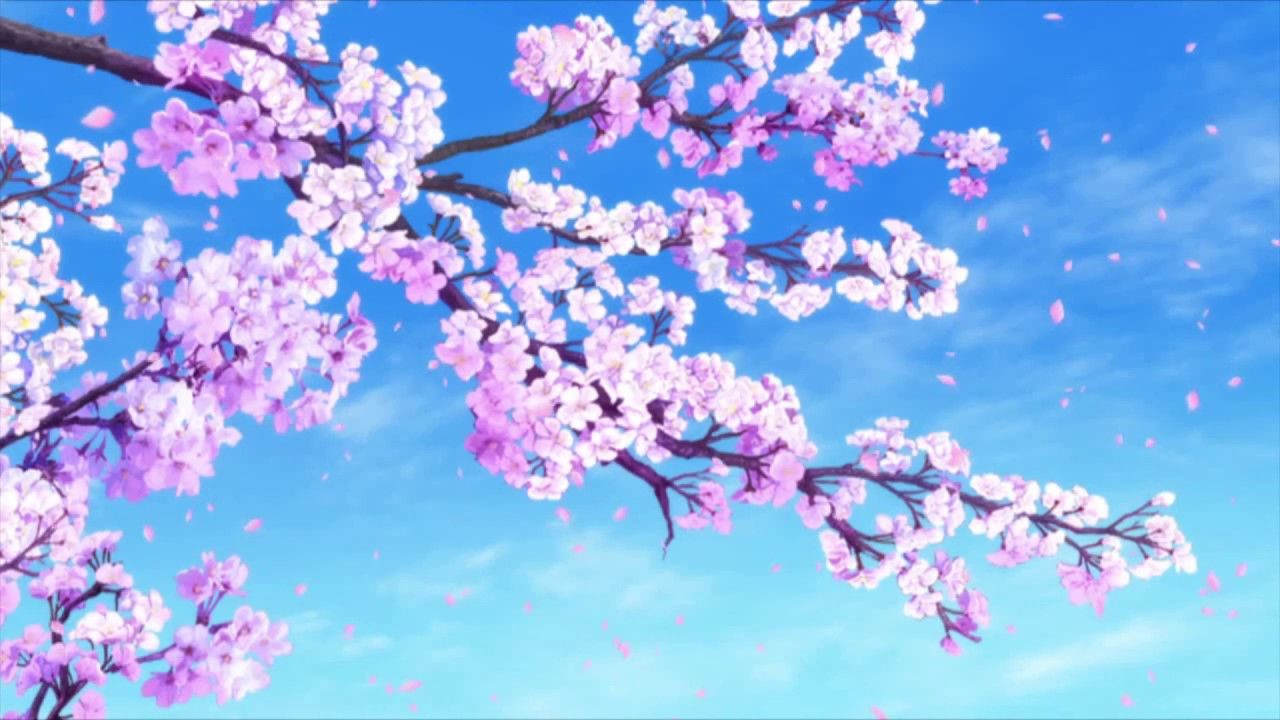 Falling Sakura Wallpaper Engine Youtube Dark Wallpaper Nature Wallpaper Wallpaper
