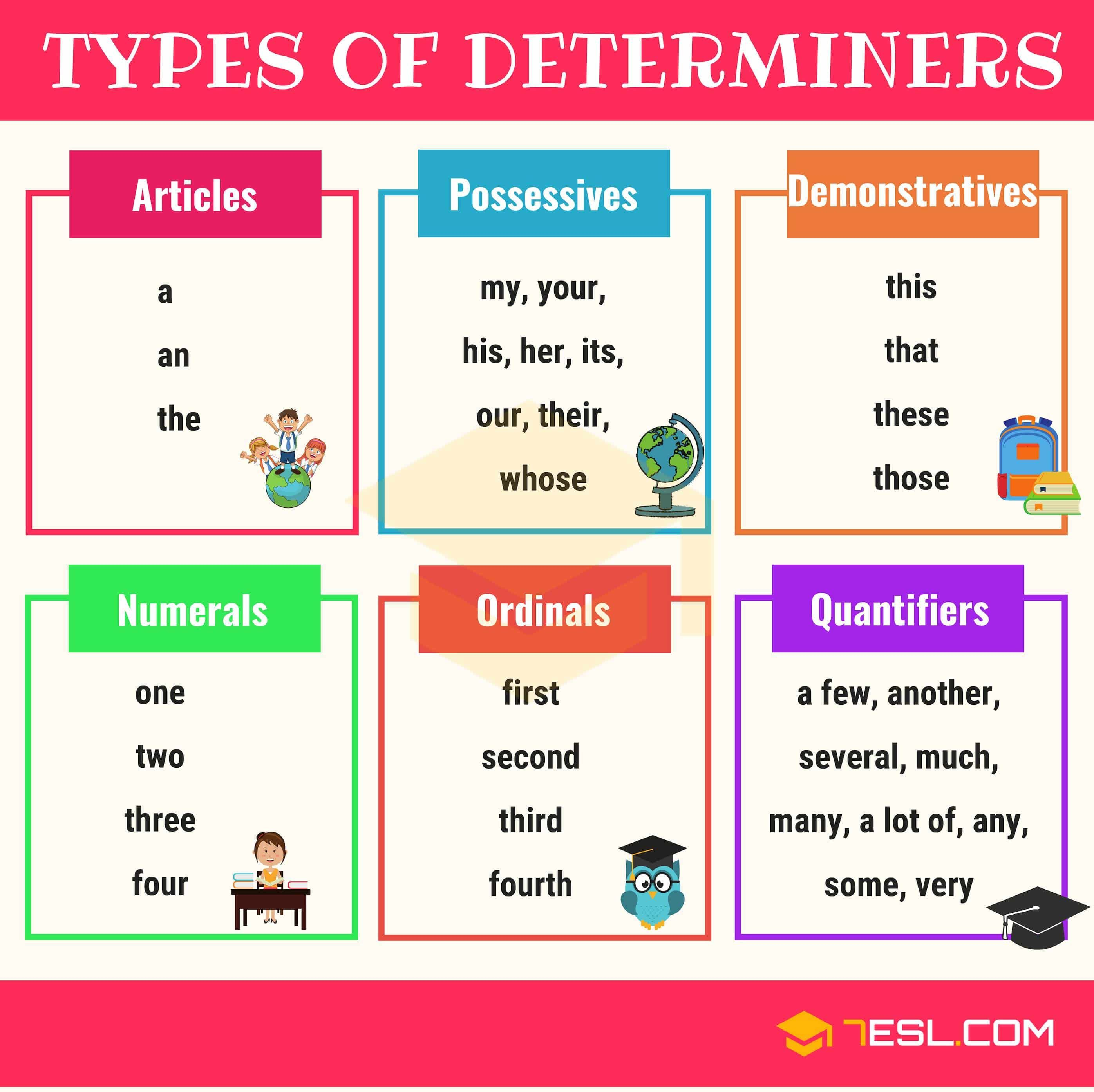 Determiner Definition Types List And Useful Examples Of