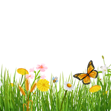 Spring Grass With Butterflies Beautiful Background Green Grass Spring Png Transparent Clipart Image And Psd File For Free Download