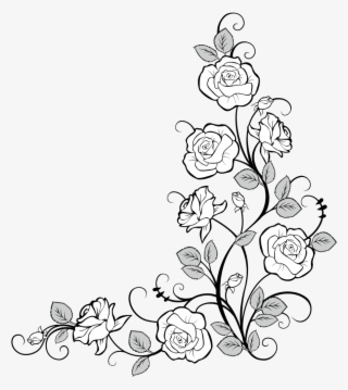 Frames Frame Corner Corners Borders Border Roses Drawing Border Design Flower 9543317 Drawing Borders Flower Drawing Flower Border