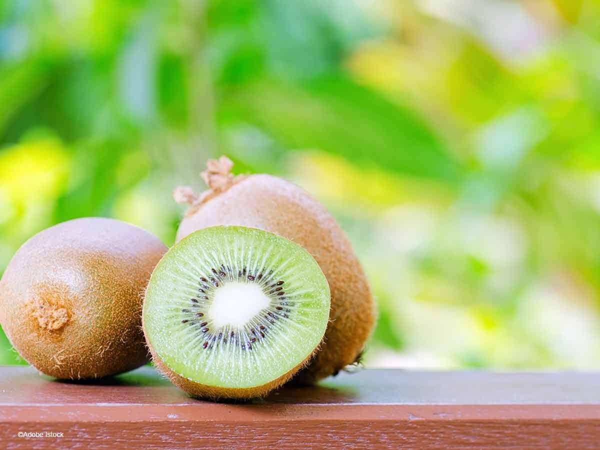 Comment cultiver le kiwi?   Cultiver, Kiwi, Jardinage