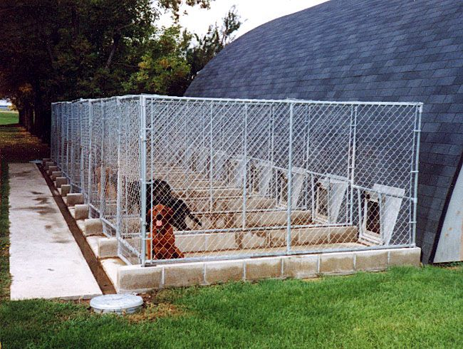 Kennel Floor Septic Systems Dogs Dog Kennel Designs