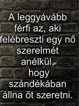 bor versek idézetek Pin by Viola Bor on Versek és idézetek | Picture quotes