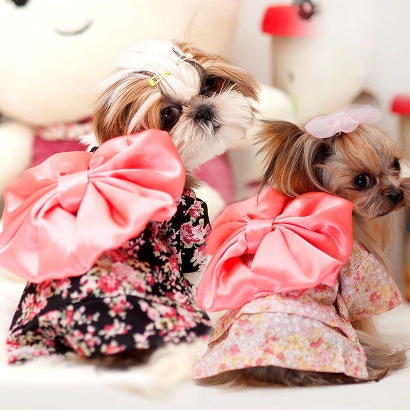 Kimono Shih Tzu Pet Dog Dress Papillon Puppy Bowknot Skirt Small Cat