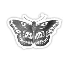One Direction Gifts Merchandise Harry Styles Butterfly One Direction Tattoos Wrist Tattoo Cover Up