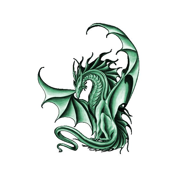 Green Dragon Liked On Polyvore Featuring Dragons Animals Backgrounds Fantasy Art And Fillers Dragon Tattoo Dragon Artwork Dragon Sketch