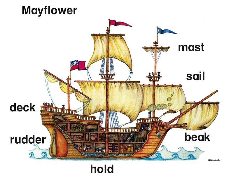 Diagram Of The Mayflower