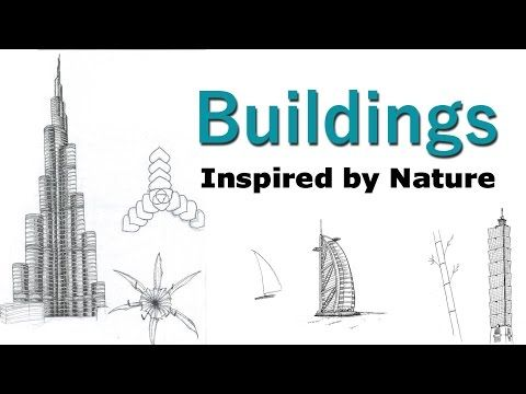Michael Pawlyn   Biomimicry In Architectural Design   YouTube | Ban The S  Word | Pinterest | Architecture