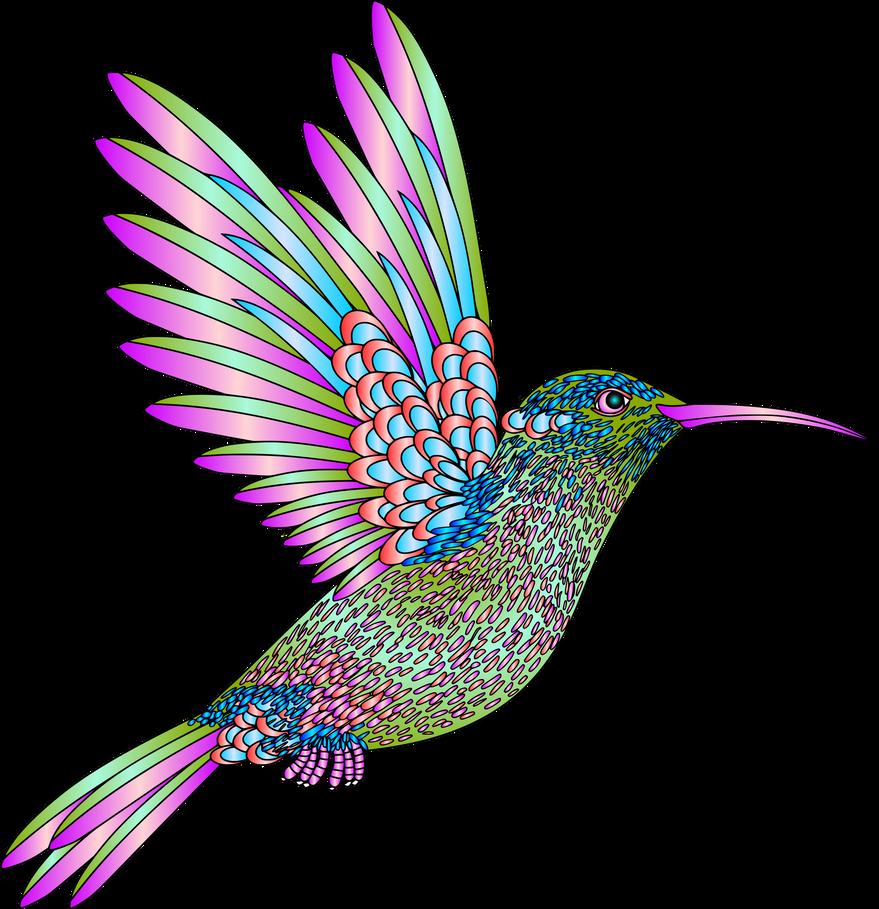 Colibri Aves Colores Degradados 32 3 By Creaciones Jean Folk Art