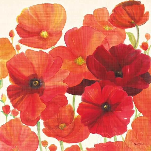 Red and Orange Poppies I  - 27x27 by