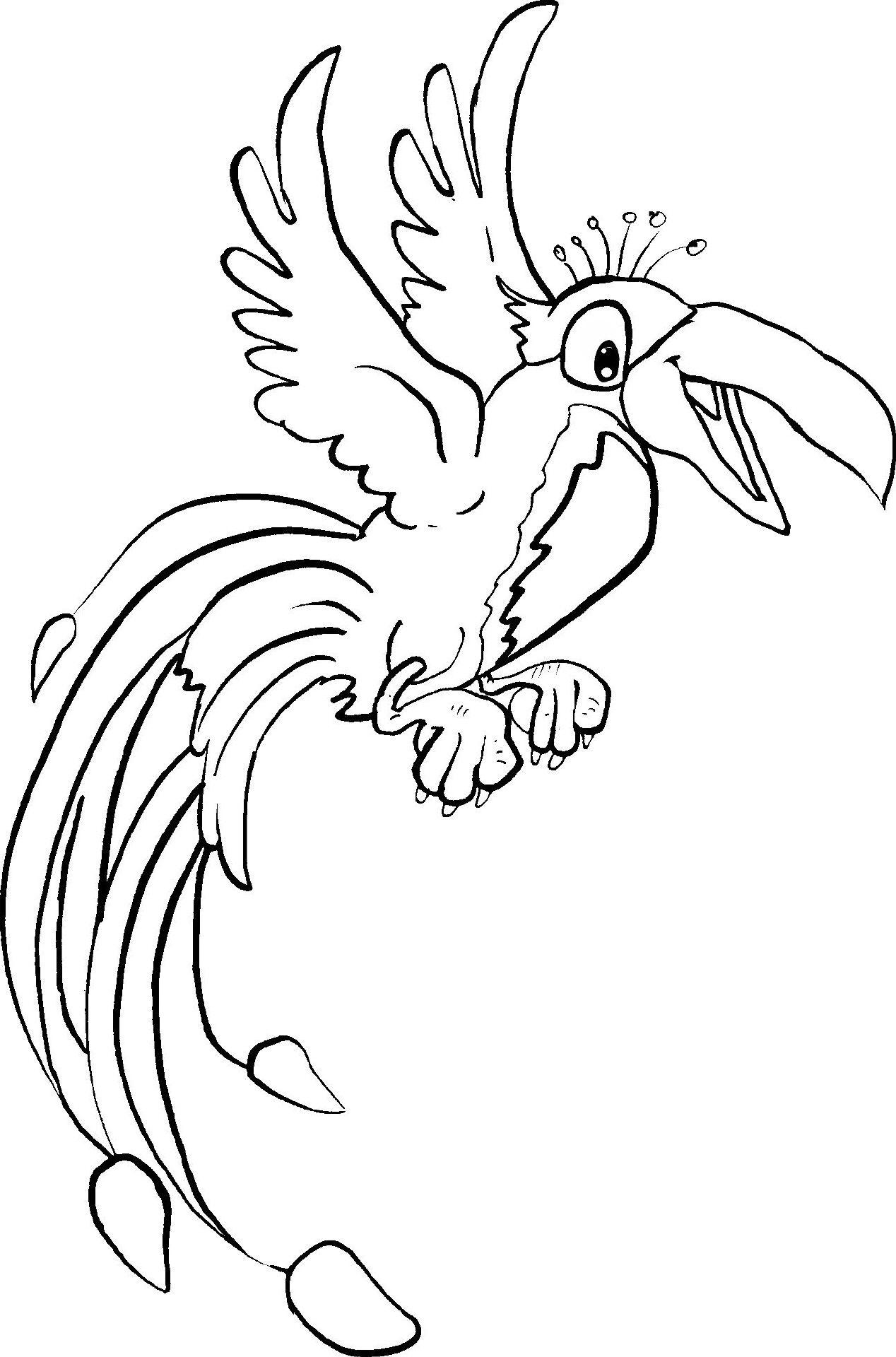 papagei  ausmalbilder tiere ausmalen ausmalbilder
