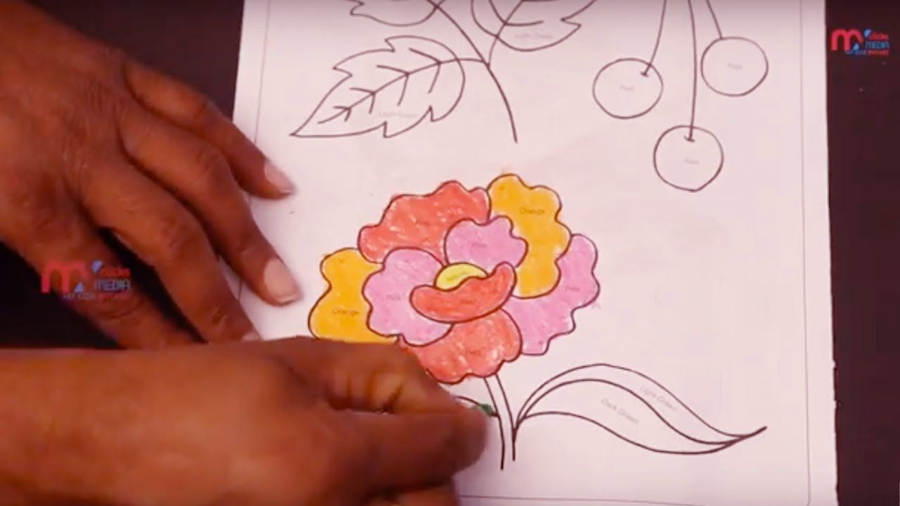 How to Color on flowers, Learn Colors for Kids, How to Draw a ...
