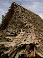 Palm Leaf Roof Thatched Roof Palm Frond Art House In Nature