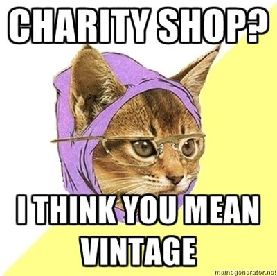 How Millennial Became The New Hipster Best Cat Memes Hipster Cat Warrior Cats