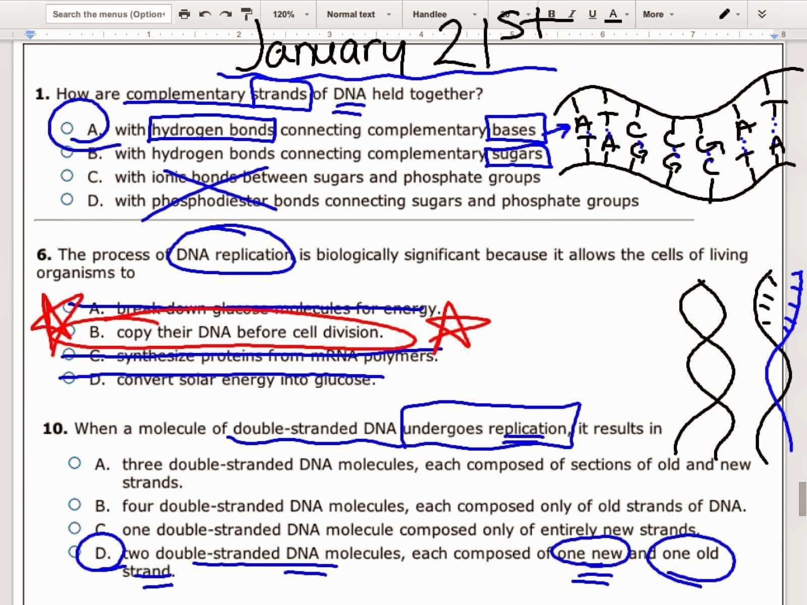 Classified Dna Base Pairing Worksheet Answers Dengan Gambar
