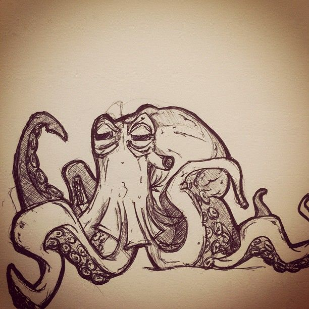 Octopus sketch Draw Pinterest Octopus sketch Sketches and